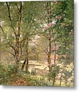 In A Fairy Woodland Metal Print