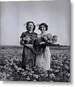 In A Field Of Flowers Vintage Photo Metal Print