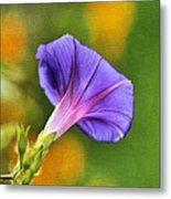 In All Her Glory Metal Print