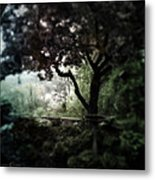 In And Out Of The Garden Metal Print