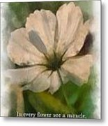 In Every Flower See A Miracle 01 Metal Print