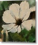 In Every Flower See A Miracle 03 Metal Print
