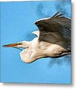 In Flight With Stick Metal Print