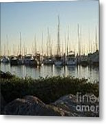 In Harbor Metal Print by Amy Strong