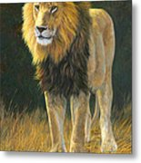 In His Prime Metal Print