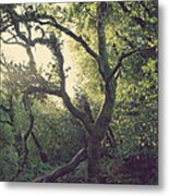 In Our Own Little Magical World Metal Print