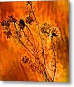 In Praise Of Weeds Metal Print