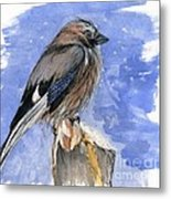 In The Cold Winter Night Metal Print