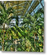 In The Conservatory Metal Print