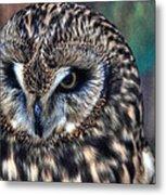 In The Eyes Of The Owl Metal Print