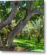 In The Garden. Mauritius Metal Print