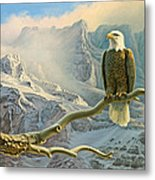 In The High Country-eagle Metal Print