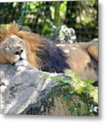 In The Jungle The Mighty Jungle Metal Print
