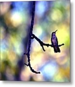 In The Last Of The Light Metal Print