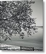 In The Moments When We Breathe Metal Print