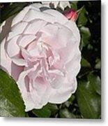 In The Rose Garden Metal Print