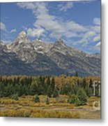 In The Shadow Of The Tetons Metal Print
