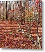 In The Shadows Of Fall 1 Metal Print