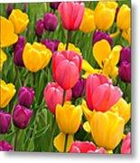 In The Tulip Garden Metal Print