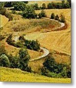 In The Valley Metal Print