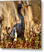 In The Water - Reflection Metal Print