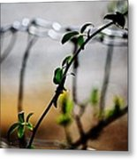 In The Wire  Metal Print
