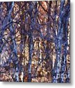 In The Woods V5 Metal Print