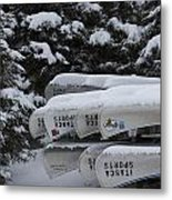 In Winter Sorage Metal Print by Tim Grams