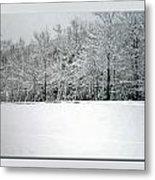 In Winter's Light Metal Print