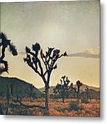 In Your Arms As The Sun Goes Down Metal Print