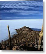 Incahuasi Island And Salar De Uyuni Metal Print