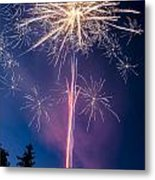 Independence Day 2014 1 Metal Print by Alan Marlowe
