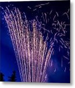 Independence Day 2014 17 Metal Print by Alan Marlowe