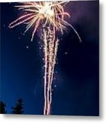 Independence Day 2014 7 Metal Print by Alan Marlowe