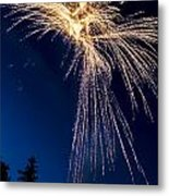 Independence Day 2014 8 Metal Print by Alan Marlowe