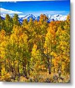 Independence Pass Autumn Colors Metal Print