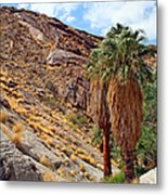 Indian Canyons View With Two Palms Metal Print