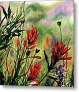 Indian Paint Brush Metal Print