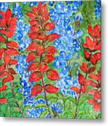 Indian Paintbrush And Bluebonnets Metal Print