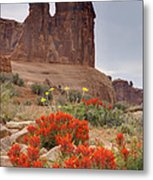 Indian Paintbrush And The Three Gossips Metal Print