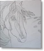 Indian Pony Metal Print by Rosalie Klidies