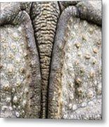 Indian Rhinoceros Tail Metal Print