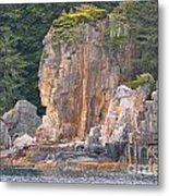 Indian Rock  Metal Print