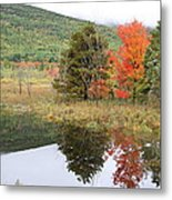 Indian Summer Acadia Park Metal Print