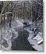 Indiana Winter Metal Print by Thomas Fouch