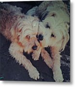 Indie And Cea Mother Son  Metal Print