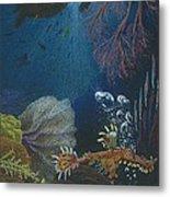 Indigenous Aquatic Creatures Of New Guinea Metal Print by Beth Dennis