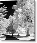 Infrared Delight Metal Print
