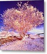 Infrared Tree Metal Print