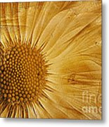 Infusion Metal Print by John Edwards